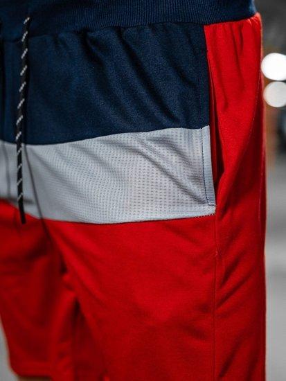 Темно-синие мужские спортивные шорты Bolf KS2565
